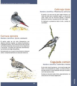 Cristóbal Aguilar. Dibujos animales